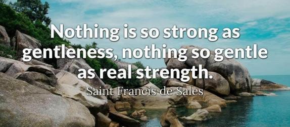 saintfrancisdesales3-2x